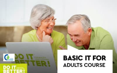 Basic Informatics for Adults Course