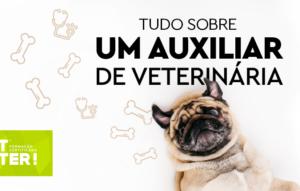 o-que-faz-um-auxiliar-de-veterinária_png
